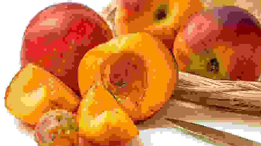 Οι ελληνικές κονσέρβες ροδάκινου κυριαρχούν στην αγορά της Νότιας Κορέας