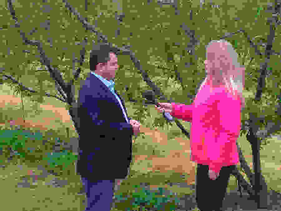 Παρέμβαση Κ. Καλαϊτζίδη στον ΕΛΓΑ για άμεση αποζημίωση της καταστροφής από το χαλάζι