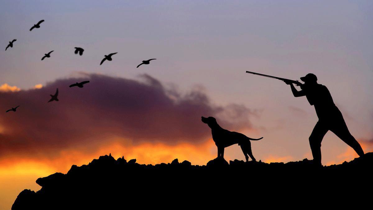 Κυνηγετική περίοδος 2020: Τι επιτρέπεται, τι απαγορεύεται