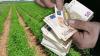 Διευκρινίσεις του ΟΠΕΚΕΠΕ για την πληρωμή της προκαταβολής της βασικής ενίσχυσης για το 2017
