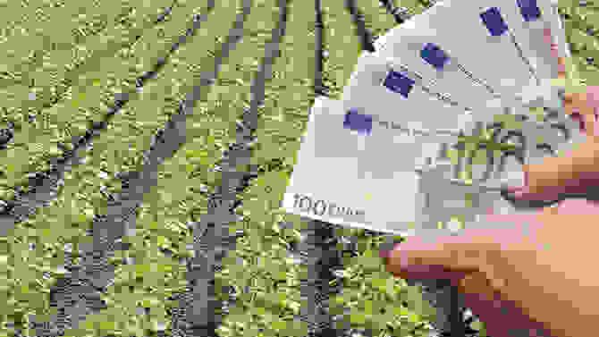 Agrotica: Ανησυχία για την Κοινή Αγροτική Πολιτική της Ε.Ε. από το 2020