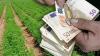 Πληρωμή Αποζημιώσεων Ύψους 28 εκατ. ευρώ Από Τον ΕΛΓΑ