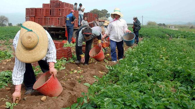 Aνοίγει τον Μάιο η πλατφόρμα του εξωδικαστικού συμβιβασμού για τους αγρότες