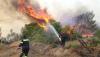 «Από πού να κόψουμε τη Μαραθώνος;» – Οι ηχογραφημένες συνομιλίες από τους ασυρμάτους των αστυνομικών (ΕΙΚΟΝΑ)