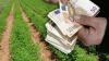 Μέχρι πότε θα γίνουν οι πληρωμές για το 70% της βασικής ενίσχυσης των αγροτών