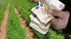 Πότε θα λάβουν ο αγρότες τις επιδοτήσεις από τον ΟΠΕΚΕΠΕ